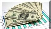 境外投資局:越南企業去年境外投資 4.32 億美元。(示意圖源:互聯網)