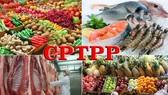 CPTPP 協定與我國企業的商機。(示意圖源:田升)