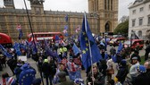 英國倫敦民眾在議會大廈外揮舞旗幟和標語牌。(圖源:新華社)
