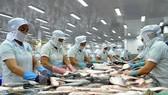 2018年查魚出口金額近23億美元,高於此前預測的21億至22億美元。(示意圖源:互聯網)