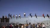 攀爬美墨邊境隔離牆的移民者試圖入境美國。(圖源:互聯網)