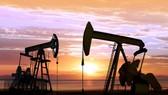 歐佩克或延長減產協議令國際油價上漲