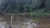 Thêm 2 học sinh nữ tại Khánh Hòa đuối nước