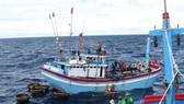 Mất liên lạc với 143 tàu cá ở vùng áp thấp nhiệt đới đổ bộ