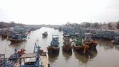 Ngư dân Bình Thuận tất bật chuẩn bị ra khơi sau bão