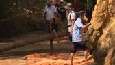 Nhân viên Công ty Green Dragon san đất chặn ngang suối Tiên.