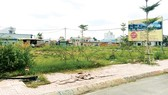 Housing land offered for sale in District 9, HCMC (Photo: SGGP)