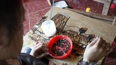 Participation: A tourist learns to make a rice painting under the guidance of Dang. (Photo: VNS)