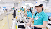 Workers at Japanese firms in Tan Thuan Export Processing Zone (Photo: SGGP)