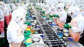 Processing and manufacturing continues receiving new FDI projects in January 2018