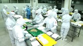 Processed food production at CJ Cau Tre Company. (Photo: SGGP)