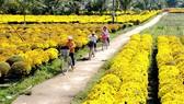 Sản xuất hoa kiểng - thế mạnh đặc thù của huyện Chợ Lánh, Bến Tre