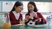 Phạm Thu Phương và Nguyễn An Cát Uyên thực hiện đề tài nghiên cứu trồng nấm từ phế thải hoa cúc và mùn cưa