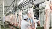 Cảnh báo thiếu nguồn cung thịt heo cuối năm