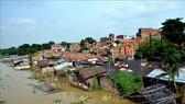 Cảnh ngập lụt tại Muzzaffarpur, bang Bihar, Ấn Độ ngày 18-7. Ảnh: THX/TTXVN