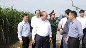 Thủ tướng thăm cánh đồng mía tại xã Thành Long, huyện Châu Thành. Ảnh: VGP/Quang Hiếu