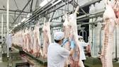 Chủ động nhập khẩu nếu thị trường khan hiếm