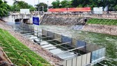 Đoạn sông Tô Lịch đang được thử nghiệm làm sạch bằng công nghệ Nhật Bản