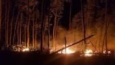 Đám cháy bùng phát dữ dội trong đêm