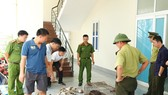 Động vật hoang dã bị lực lượng chức năng bắt giữ