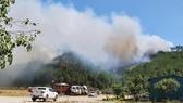 Cháy rừng tại huyện Nghi Xuân, Hà Tĩnh
