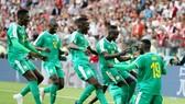 Senegal và màn ăn mừng chiến thắng đầy ấn tượng. Ảnh: Getty Images