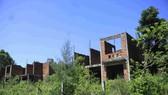 Dự án Khu nhà ở công nhân viên Nhà máy đóng tàu Dung Quất bỏ hoang tại xã Bình Đông, huyện Bình Sơn, tỉnh Quảng Ngãi. Ảnh NGUYỄN TRANG