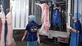 Các sản phẩm thịt heo tại MM Mega Market được vận chuyển bằng xe chuyên dụng, đảm bảo nhiệt độ trong khoảng 2-4 độ C