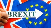 Anh: Yêu cầu trưng cầu dân ý về Brexit