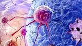Hơn 300.000 người đang sống chung  với ung thư
