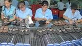 Nguyên liệu sản xuất giày dép còn phụ thuộc nhiều vào nhập khẩu   Ảnh: THÀNH TRÍ