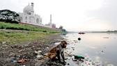 Dùng súng cao su khống chế khỉ ở Taj Mahal