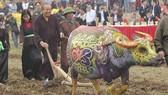 Phó Thủ tướng thực hiện nghi thức cày ruộng tại Lễ hội Tịch điền. Ảnh: VGP
