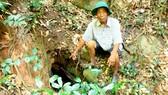 Hầm địa đạo nằm sâu trong rừng Sầu Đâu (thôn Hải Môn, xã Phổ Minh, huyện Đức Phổ, Quảng Ngãi)