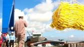 ĐBSCL đang kỳ vọng về cảng biển nước sâu Trần Đề  đáp ứng nhu cầu xuất nhập khẩu hàng hóa cho toàn vùng