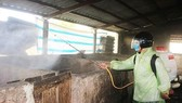 Phun hóa chất khử trùng chuồng trại nuôi heo tại Quảng Trị