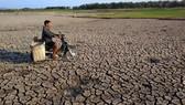 Nam bộ: Hạn mặn đến sớm