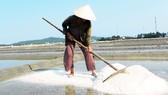 Diêm dân Sa Huỳnh trên đồng muối truyền thống