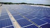 Bình Định đầu tư 1.440 tỷ đồng xây dựng Nhà máy điện mặt trời