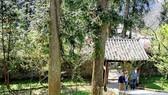 Dinh thự họ Vương người H'Mông tại xã Sà Phìn, huyện Đồng Văn, tỉnh Hà Giang