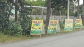 Kiểm tra các dự án phân lô bán nền chưa đủ cơ sở pháp lý