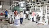 Sản xuất nguyên liệu sắn xuất khẩu tại một nhà máy