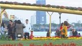 Du khách ấn tượng mạnh với đường hoa Đà Nẵng 2019