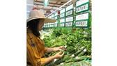 Hàng nông sản dồi dào, đáp ứng đa dạng nhu cầu của người dân
