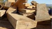 Khởi tố vụ tập kết hơn 90m3 gỗ lậu trên đường biên giới