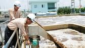 Xử lý nước thải, lĩnh vực được doanh nghiệp nước ngoài quan tâm đầu tư     Ảnh: THÀNH TRÍ