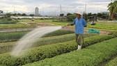 200.000 USD hỗ trợ các start-up nông nghiệp