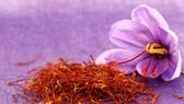 Nhụy hoa nghệ tây có thể trị bệnh Alzheimer