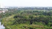 TPHCM xử lý sau thanh tra về đất đai