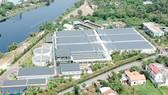 Ưu tiên phát triển năng lượng điện mặt trời